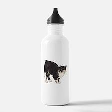 Manx Cat Water Bottle
