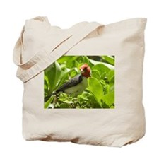 Red-Crested Cardinal Tote Bag