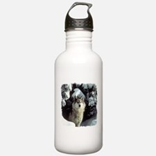 Winter Wolf Water Bottle