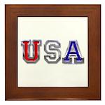 USA Chrome Framed Tile