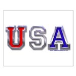 USA Chrome Small Poster