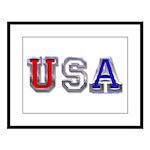 USA Chrome Large Framed Print
