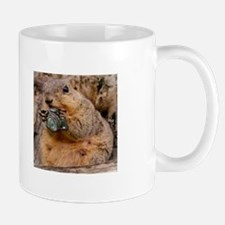 Squirrels looking at me funny Mugs