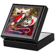 Candy Cane Cat Keepsake Box