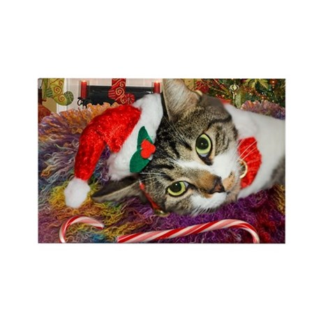 Candy Cane Cat Rectangle Magnet
