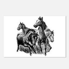 Wild Horses Illustration Postcards (Package of 8)