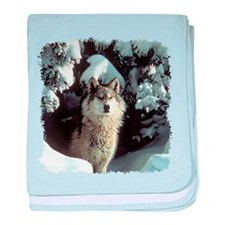 Winter Wolf baby blanket