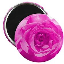Flowery Magnet