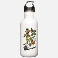 Ruby-throated Hummingbird Water Bottle