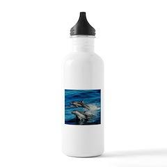 Dolphin Art Water Bottle