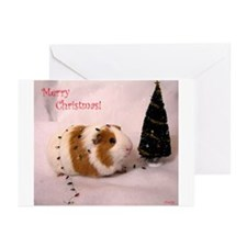 Timmys Tree! Greeting Cards (Pk of 10)