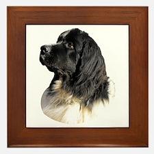 Landseer Portrait Framed Tile