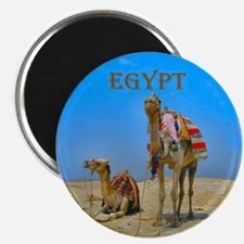 Camels & Pyramids - Magnet