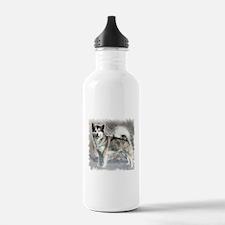 Alaskan Malamute Art Water Bottle