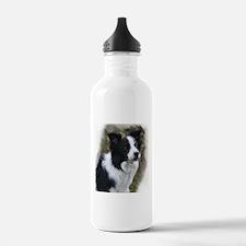 Border Collie Art Water Bottle