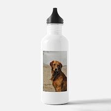 Lakeside Golden Water Bottle