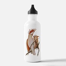 Devoted Water Bottle