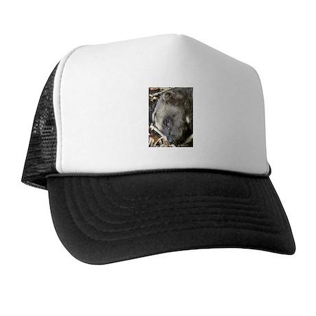 Sleeping Wolverine Trucker Hat