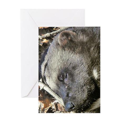 Sleeping Wolverine Greeting Card