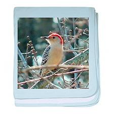 Red-bellied Woodpecker baby blanket