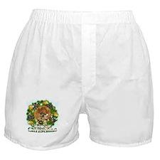 Merry Christmas Pomeranian Boxer Shorts