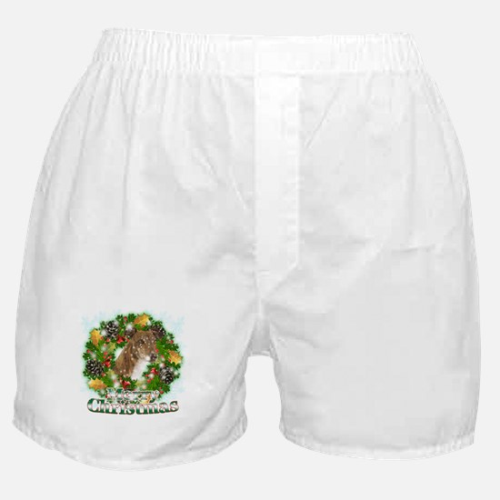 Merry Christmas Greyhound Boxer Shorts