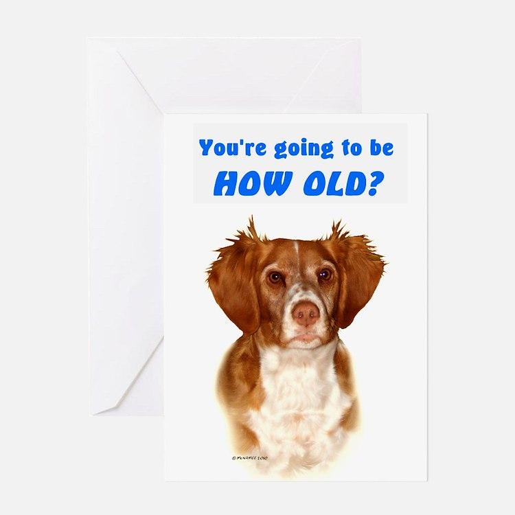 Brittany Spaniel Birthday Card