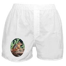 Chipmunk Boxer Shorts