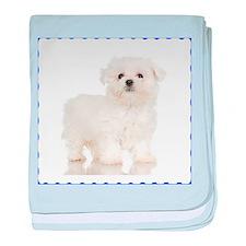 Maltese Puppy baby blanket