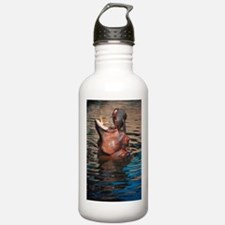 Hippo Water Bottle