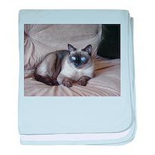 Unique Pixies baby blanket