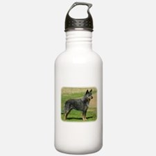 Australian Cattle Dog 9F060D-06 Water Bottle