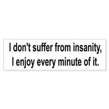 10x3_sticker-insanity Bumper Bumper Sticker