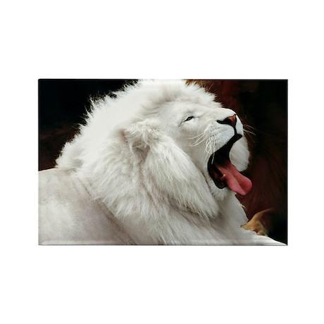 WHITE LION Rectangle Magnet (100 pack)