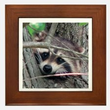 """Peek-A-Boo!"" Raccoon Framed Tile"