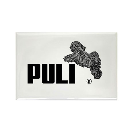 Puli Agility Rectangle Magnet
