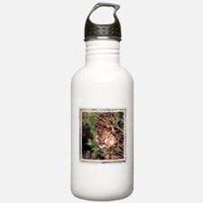 Cougar Water Bottle
