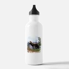 Cross Fox Water Bottle