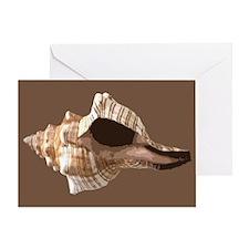 SHELL: Greeting Card