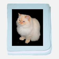 Zeus the White Himalayan Cat baby blanket