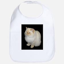 Zeus the White Himalayan Cat Bib