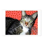 Polkadot Puss Tabby Cat Postcards (Package of 8)