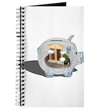Home Savings Journal