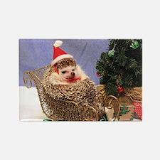 Christmas Hedgehog Rectangle Magnet