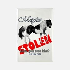 Stolen Horses Rectangle Magnet