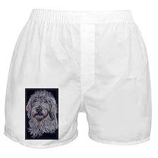 Labradoodle 2 Boxer Shorts