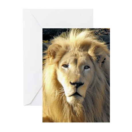 White Lion Portrait Greeting Cards (Pk of 10)