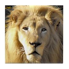 White Lion Portrait Tile Coaster