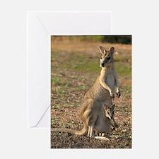 Mammal Card