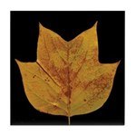 Fall Tulip Leaf Tile Coaster